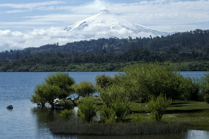 Ruka Pillañ (Villarrica) sumendia. Villarrica, Txile.
