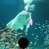 マリホ水族館が相変わらずエンターテイナーだった件 夏はひんやり~でオススメ