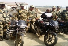 Photo of BSF apprehend one smuggler with 15 cattle heads and 3 motorbikes