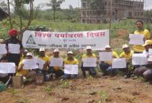 Max Cement Celebrates World Environment Day