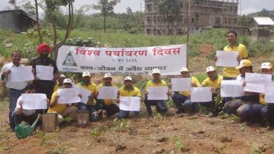 Photo of Max Cement Celebrates World Environment Day