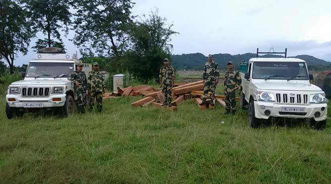 BSF Confiscates Huge Quantity of Wooden Logs with Two Pickup