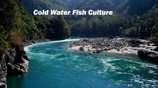 Traning Programme on Cold Water Fish Culture