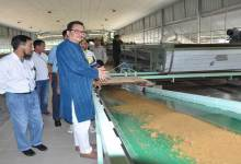 Photo of Chwona Mein Visits Integrated Farm of Farmer Tana Neka Tara at Sonajuli
