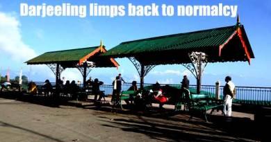 WATCH VIDEO- Darjeeling limps back to normalcy