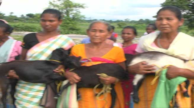 Bongaigaon Diocese Distributes goats to Widows