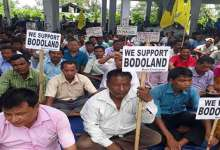 Photo of Kokrajhar- Bodo Employees sitting on dharna demanding Bodoland