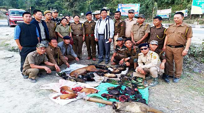 Itanagar: Forest force seized animal bodies
