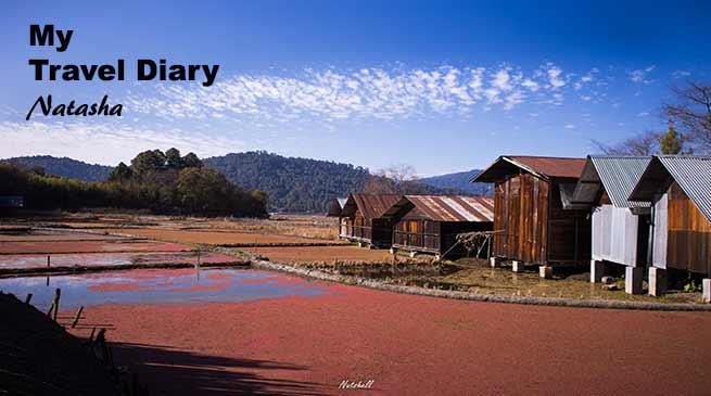 Arunachal: A small Village in Ziro....SIIRO