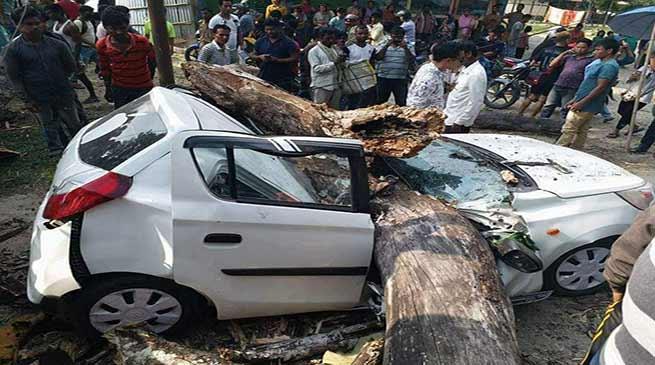 Arunachal : Tragic Road accident, Big tree fell down on a Car