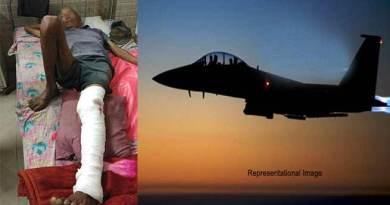Arunachal: 1 person injured, 4 mithun killed in IAF bombings at Dollungmukh