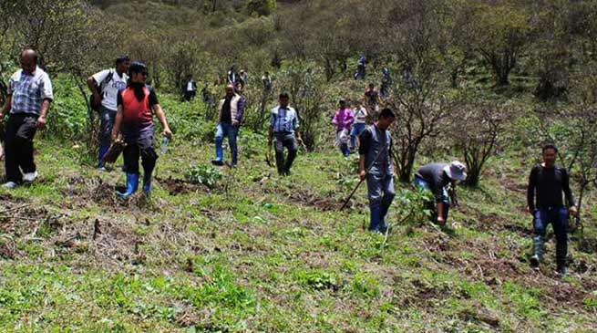 Arunachal: World Environment Day celebrates all over state