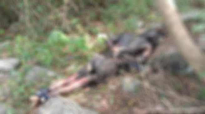 Arunachal:Decomposed dead body found