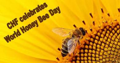 Arunachal: CHF celebrates World Honey Bee Day