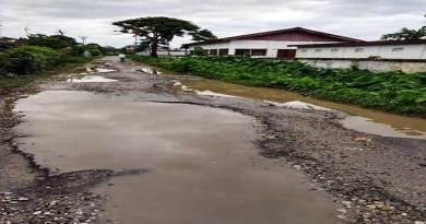 Arunachal: Dilapidated and potholes ridden roads, woes for Namsai public