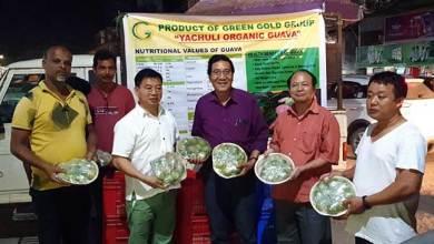 Arunachal: Yachuli farmer sells organic guava worth of Rs 1.5 lacs in a day