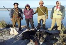 Photo of Arunachal: Hunter arrested with killed Wild Boar from D. Ering WL Sanctuary