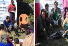Photo of Arunacha:Skill training on Goat Rearing & Management Concluded at KVK Anjaw
