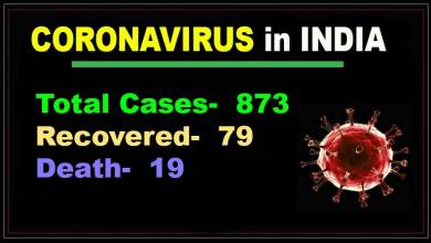 Photo of Coronavirus in India: 873 COVID-19 cases, 19 death