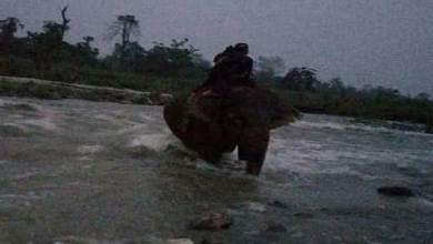 Photo of Arunachal: Lohit police rescues 2 girls trapped in Tezu Nallah