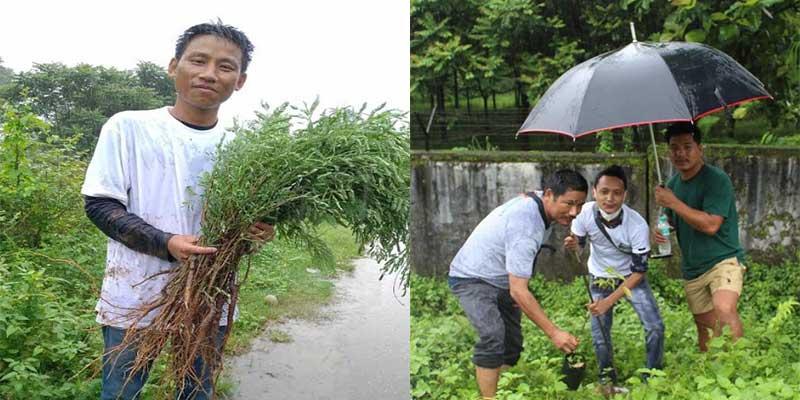 Arunachal: ABSU with others planted tree saplings marking Van Mahotsav Week