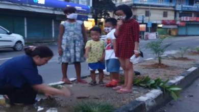 Photo of Itanagar: Woman planting sapplings by the road side is giving us a lesson
