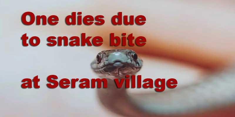 Arunachal: One dies due to snake bite at Seram village
