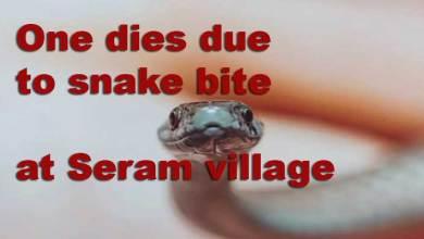 Photo of Arunachal: One dies due to snake bite at Seram village