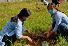 Photo of Arunachal: Govt. School of Nursing, Pasighat conducts plantation programme in the farewell of outgoing GNM students