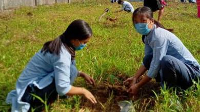 Arunachal: Govt. School of Nursing, Pasighat conducts plantation programme in the farewell of outgoing GNM students