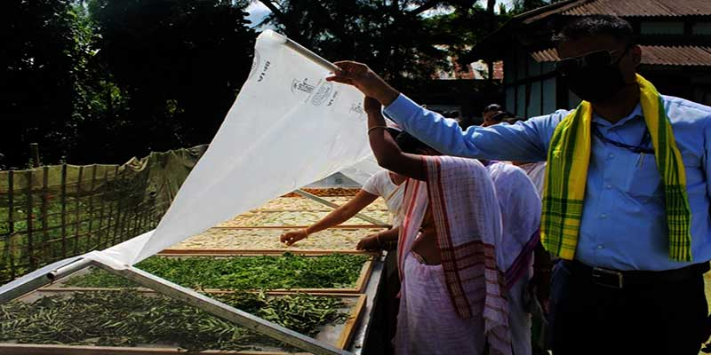 Arunachal: NABARD supported Solar Dryer launched in Namsai