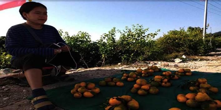 Dambuk- The orange bowl of Arunachal Pradesh