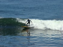Surfing along Santa Cruz
