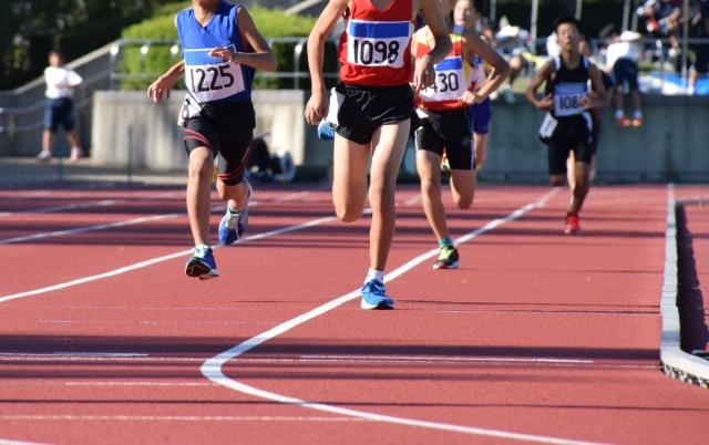 中長距離走のトレーニング組み合わせ分析と週間トレーニング計画例