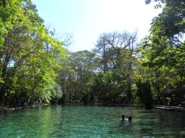 """""""...natural springs where the water is cold, clean and rejuvenating."""""""