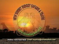 Budget Safaris Deffault Banner