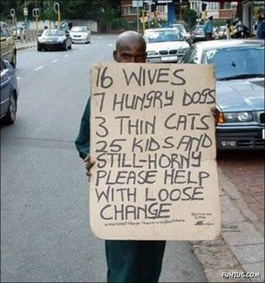 Begging is a talent! (5/6)