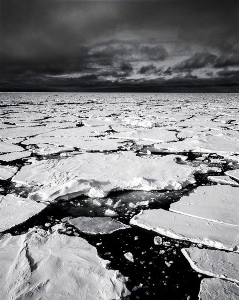 The ice of the Barents Sea (Photo: Rudi Caeyers).