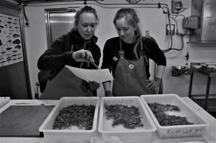 Students working onboard R/V Helmer Hansen (Photo: Valentina Lanci).