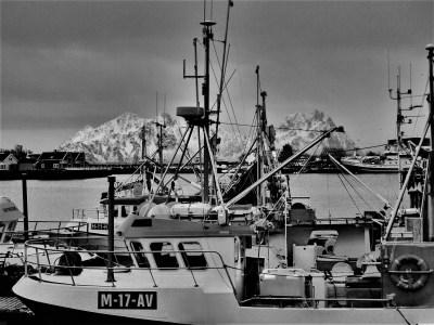 Fishing boats at Svolvær Norway (Photo: Ann E. Lennert).