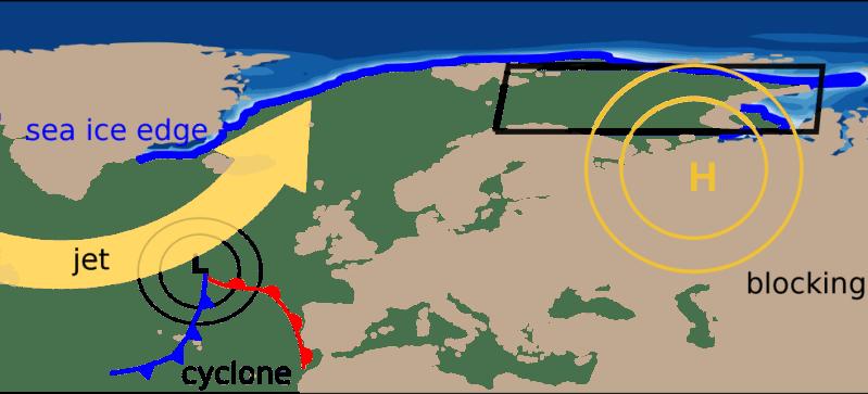 cylone