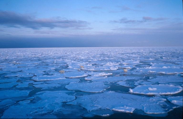 Islagt havForskning på sjøis i Barentshavet 1999. Foto: Sebastian Gerland.