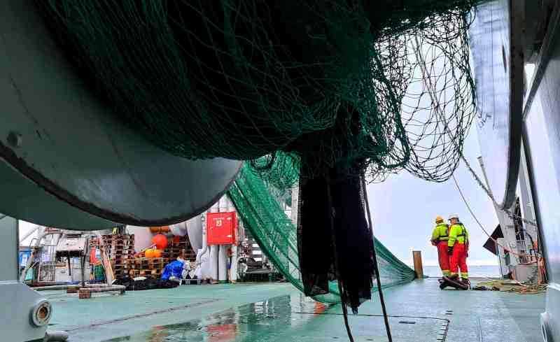 Trawling at 85 d N - 3 Bluhm