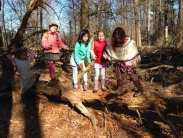 Potomac Crescent Waldorf School nature walk 1st 2nd grade woods girls balancing on a fallen tree