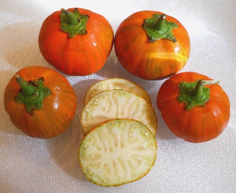 Turkish Orange