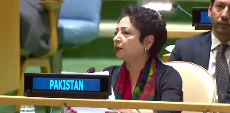 Photo of Maleeha Lodhi outlines present challenges to UN peacekeeping