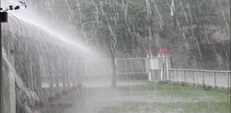 Photo of PDMA points rain alert for KP