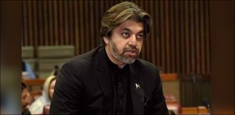 Photo of We stand with individuals of Indian Occupied Kashmir: Ali Muhammad Khan
