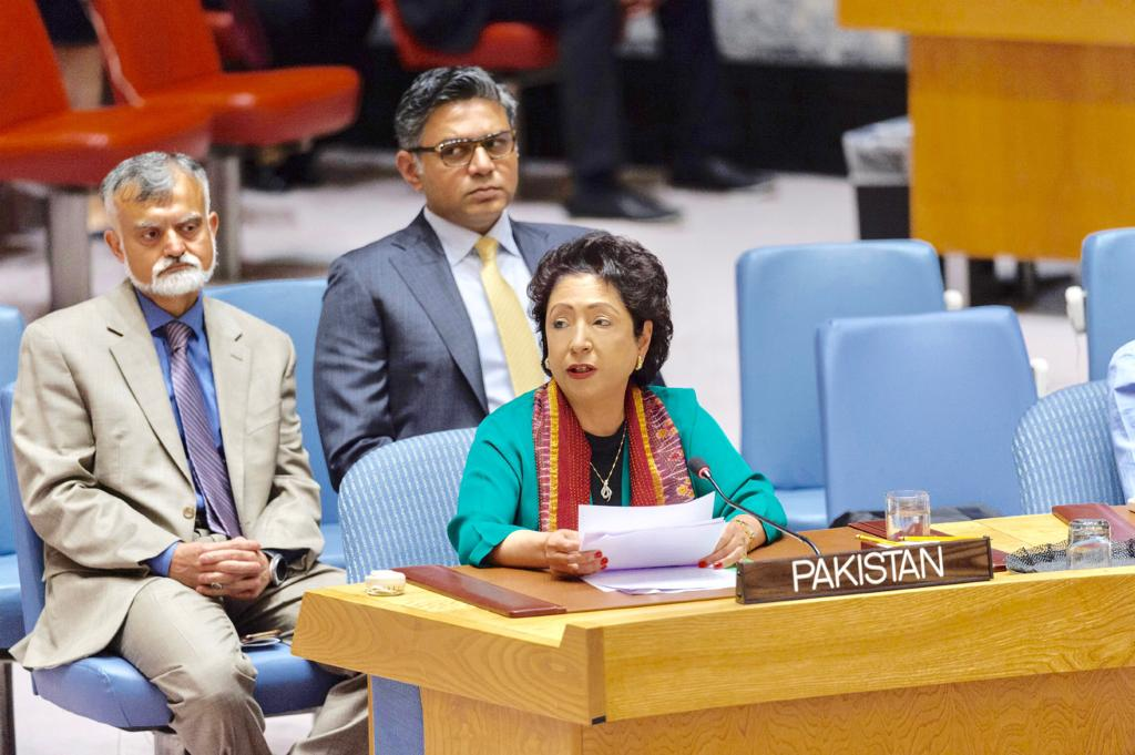 Photo of Maleeha Lodhi requires international efforts to delink terrorism, organized crime