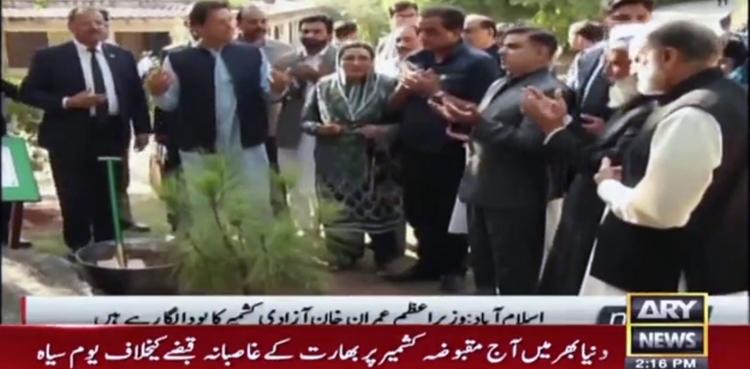 Photo of PM Imran Khan crops 'Kashmir Freedom Tree', prays for peace, prosperity